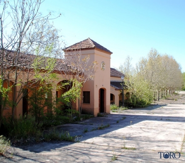 montelareina (15)