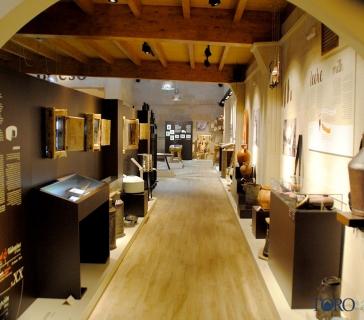 museo del queso (10)