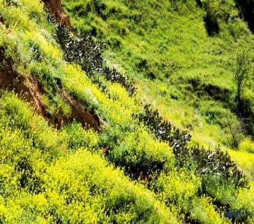 mirador de la magdalena (2)